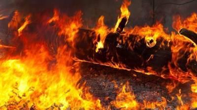Самыми масштабными на планете назвали лесные пожары в Якутии