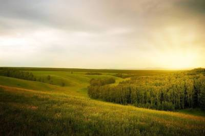 10 августа в Смоленской области возможны небольшие дожди