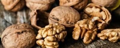 Ежедневное употребление грецких орехов помогает снизить уровень холестерина в крови