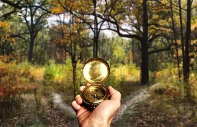 Под Смоленском в лесу заблудились две женщины