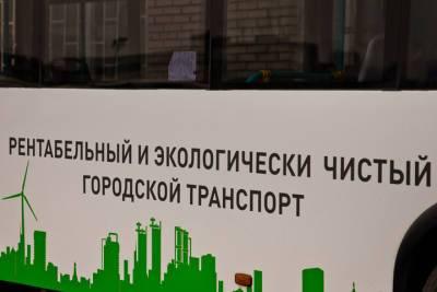 Петербургу пообещали к 2024 году парк электробусов