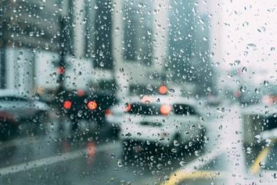 2 сентября в Смоленской области будет дождливо