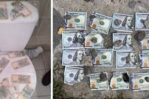 Украинцам рассказали о курьезных попытках взяточников избавиться от денег. ФОТО