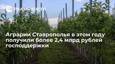Аграрии Ставрополья в этом году получили более 2,4 млрд рублей господдержки
