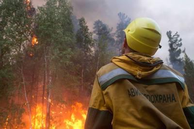 Регионы получат 8 млрд рублей в год на борьбу с лесными пожарами