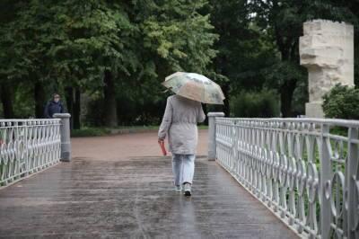 Петербуржцев во вторник ждёт сильный ветер