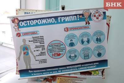 Владимир Уйба предостерег жителей Коми о наложении друг на друга гриппа и ковида
