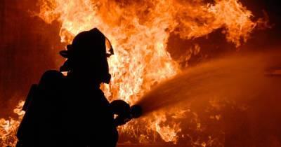 ГСЧС объявила чрезвычайную пожарную опасность во всех областях Украины, кроме четырех