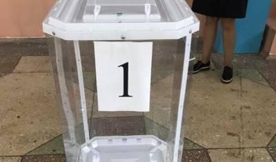 В Башкирии все больше людей решают голосовать из дома