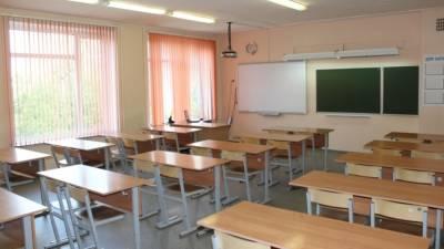 Школьники Петербурга продолжили обучение в первый день выборов в Госдуму