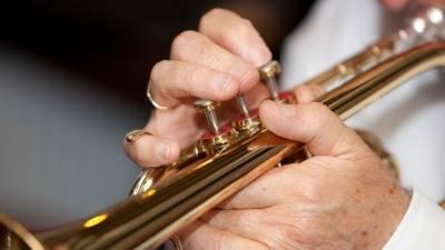 Избирателей в Ялте приветствуют игрой оркестра