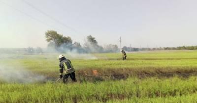 Во всех областях Украины, кроме четырех западных, объявлена чрезвычайная пожарная опасность