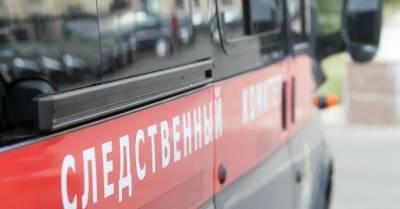 В Москве взяли под стражу дезинсектора Антона Котова по делу об отравлении арбузом
