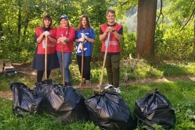 Смоленские волонтеры приняли участие в акции #ДеньЛеса
