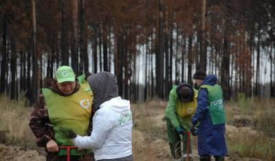 Коллектив УСТЭК принял участие в двух экологических акциях