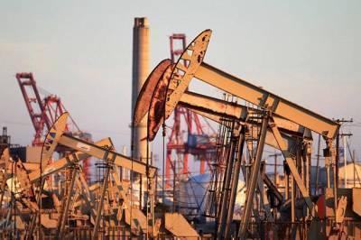 Россия обеспечена рентабельными запасами нефти на 2021 год