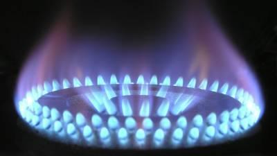 Хватит на 100 лет: назван срок исчерпания запасов газа в России