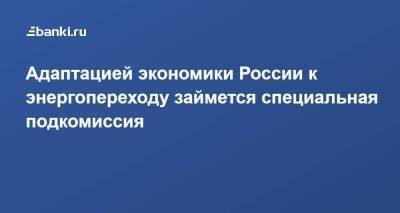 Адаптацией экономики России к энергопереходу займется специальная подкомиссия