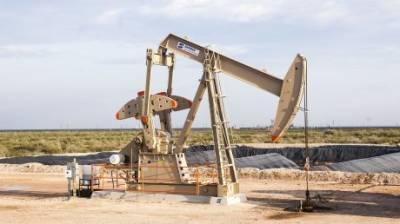 Стала известна неутешительная оценка запасов нефти в России