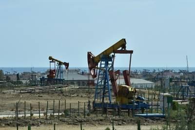 В Роснедрах назвали срок исчерпания запасов нефти в России