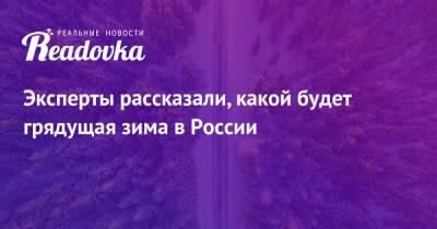 Эксперты рассказали, какой будет грядущая зима в России