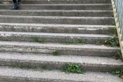 Лестницу в Финском парке в Пскове начнут ремонтировать в этом году
