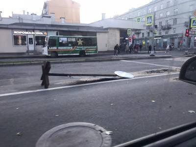 В Петербурге ветер валит светофоры и дорожные знаки, а деревья вырывает с корнем