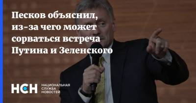 Песков объяснил, из-за чего может сорваться встреча Путина и Зеленского