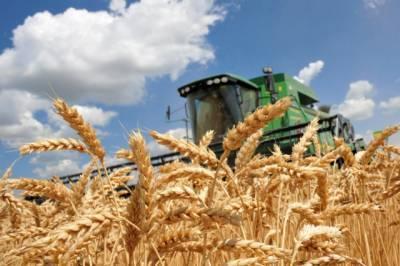 Зерновая корпорация Украины получила 1 млрд. гривен убытков с начала 2021 года