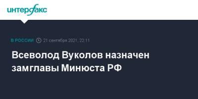 Всеволод Вуколов назначен замглавы Минюста РФ