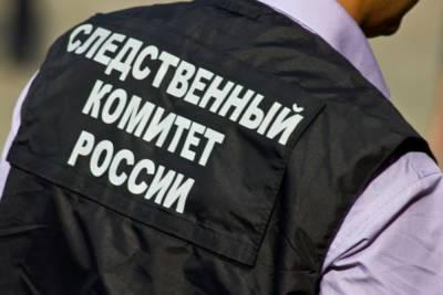 В Липецке СК проводит проверку информации о жестоком избиении студентки в колледже – Учительская газета