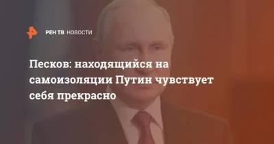 Песков: Находящийся на самоизоляции Путин чувствует себя прекрасно