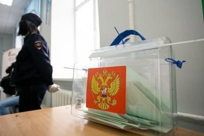 СК возбудил уголовное дело о «склонении к массовым беспорядкам» во время выборов