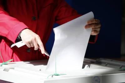 В горизбиркоме Петербурга прокомментировали ситуацию с нарушениями на выборах
