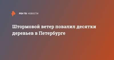 Штормовой ветер повалил десятки деревьев в Петербурге