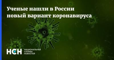 Ученые нашли в России новый вариант коронавируса