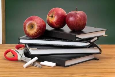 Школьников Башкирии вновь переводят на дистанционное обучение