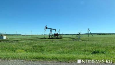 В Роснедрах оценили запасы нефти в России