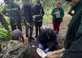 В Украине на завтра объявлено первый уровень опасности