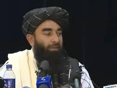 «Это в интересах России»: талибы попросили Москву о помощи в борьбе с наркотиками