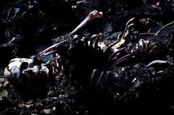 Обгорелый труп беспробудного пьяницы найден на пепелище дома в Вологодской области