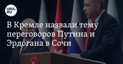 В Кремле назвали тему переговоров Путина и Эрдогана в Сочи