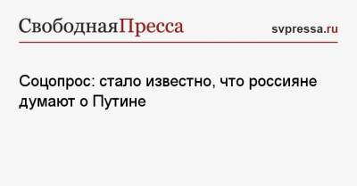 Соцопрос: стало известно, что россияне думают о Путине