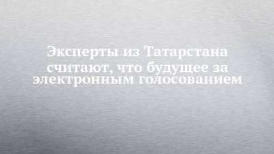 Эксперты из Татарстана считают, что будущее за электронным голосованием