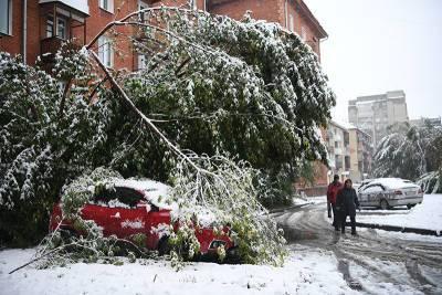 Дожди на Кубани и снегопады в Кузбассе: Россия оказалась во власти непогоды