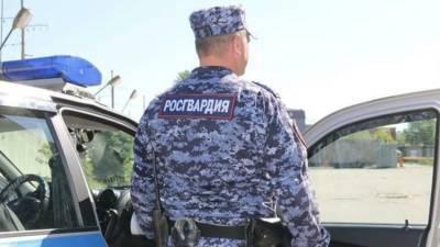 В Вологодской области ищут открывшего стрельбу из ружья мужчину