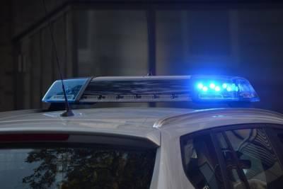 В Вологодской области полицейские задержали мужчину, застрелившего свою сожительницу