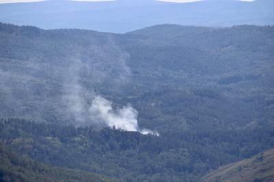 В Башкирии локализовали все лесные пожары