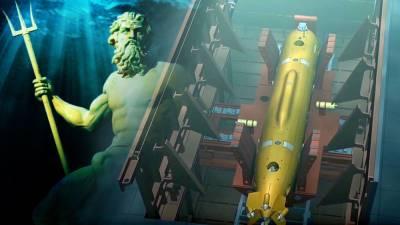 Daily Express: спутниковые снимки «зловещей российской торпеды» с ядерной боеголовкой вызвали панику в Великобритании