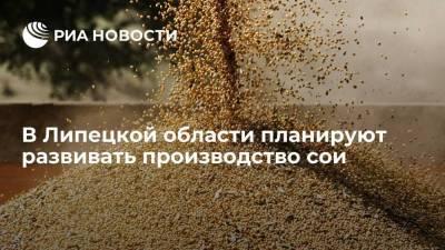 В Липецкой области планируют развивать производство сои